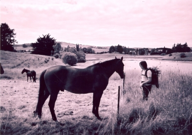 Dave and Horse, Waikouaiti